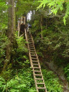 west-coast-trail-2
